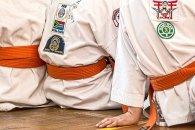 karate-1665747__340